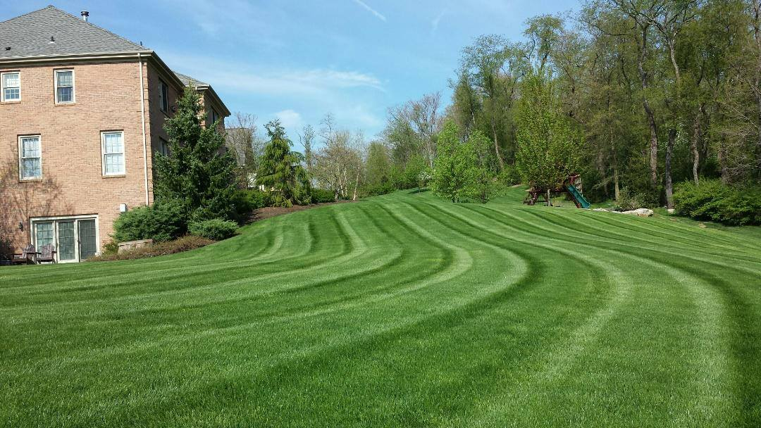 Landscape Edging Pittsburgh : Lawn maintenance fox chapel landscaping